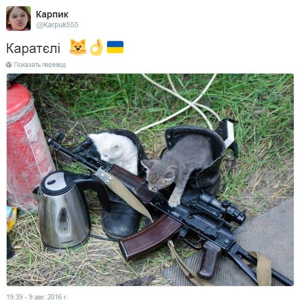Не вижу никаких аргументов против передачи дела Януковича в суд, - министр юстиции Петренко - Цензор.НЕТ 4412