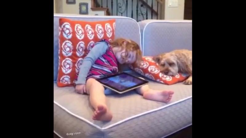 Собачка спела колыбельную ребенку