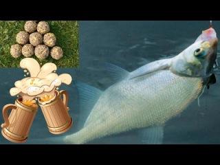 прикормка из хлеба для рыбалки