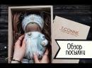 Обзор посылки: кукла ручной работы (совушка) от Татьяны Коннэ!