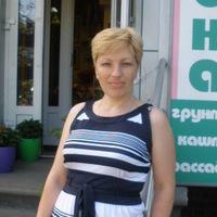 Елена Евдокимова