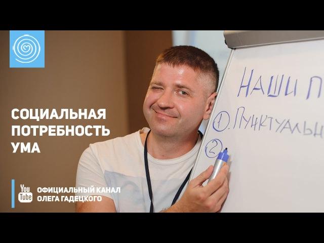 Социальная потребность ума Олег Гадецкий