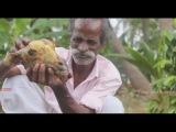 Фастфуд в Индии ГОЛОВА БАРАНА жесть