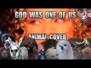 Joan Osborne - What If God Was One Of Us (Animal Cover)