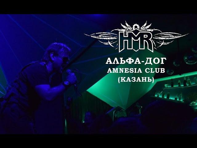 HMR Альфа Дог thrash heavy metal live in Amnesia Club Казань
