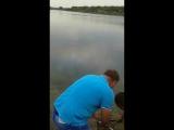 Неожиданный улов в Ростове-на-Дону, поймали золотого толстолоба, очень красивая рыба. Вот это рыбалка, она точно запомнится на в