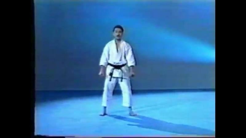 19 Годзюшихо Дай GojuShiho Dai (JKA)