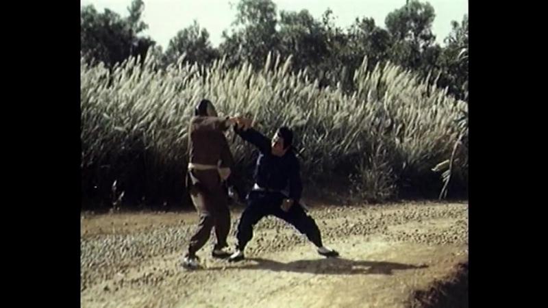 Убийца свыше / Dao jian ba wang quan (1977)