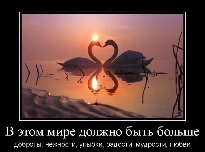 https://cs7062.vk.me/c626529/v626529802/2dac7/9DYLkyTV-lI.jpg