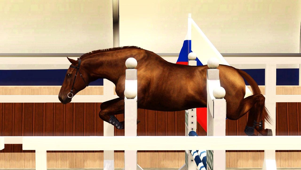 Регистрация лошадей в RHF 2 - Страница 4 CLniWTRTWJ4
