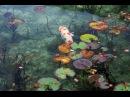 モネの池 Monet's pond / 2015 年一躍有名になった岐阜県関市にある池