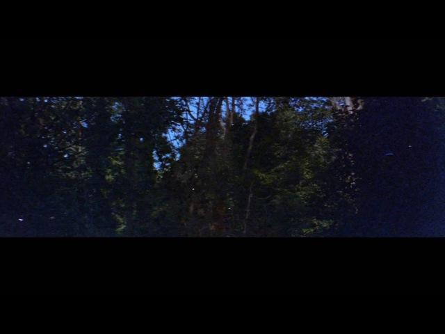 Dulwich Woods - Krasnogorsk 3 Super 16mm, Kowa Prominar 8-Z 2 x Anamorphic test
