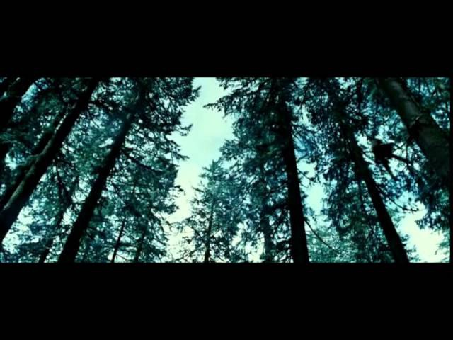 Twilight/Сумерки - Beyonce - Halo