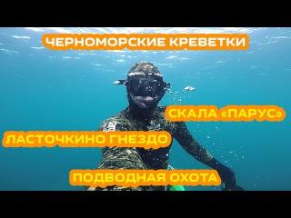 Крым 2016 / Ялта / Подводная охота / Черноморские креветки / Скала