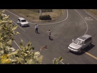 «Извини, я слишком быстро ехал». Хороший социальный ролик.