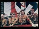 Европа помогала Гитлеру в войне с СССР Права человека Взгляд в мир