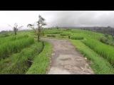 Самые красивые места на Бали - Дороги Бали и Рисовые Терассы