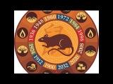 Прогноз на 2017 год по Восточному Гороскопу#Год КРЫСЫ для Стихии Огня#ОВЕН, ЛЕВ, СТРЕЛЕЦ # на ЛЮБОВЬ