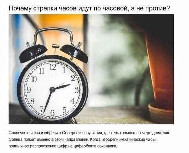 https://pp.vk.me/c626531/v626531549/64460/ZnrUF4e8UAg.jpg