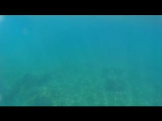 Нудисткий пляж пос. Рыбачье