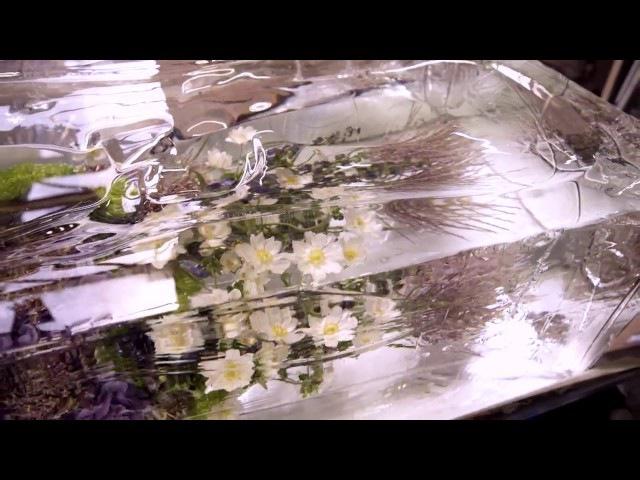 DRIES VAN NOTEN x AZUMA MAKOTO The making of ICED FLOWERS