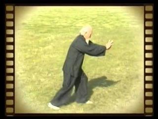 Daoist Bagua Master Lu Zijian 118 years old