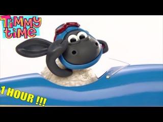 Timmy Time Full episodes NEW compilation 12   Время барашка Тимми   Мультик Все серии подряд 12