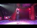 Жонглер на вольно-стоящей лестнице Кристина Гук. Программа Браво цирк Никулина