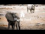 ZHU - Faded (Simmo J vs DaLoops &amp Freejak Walking With Elephants Edit)