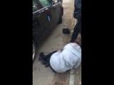 Питбуль Киев с полицией приняли ауди с сумкой оружия