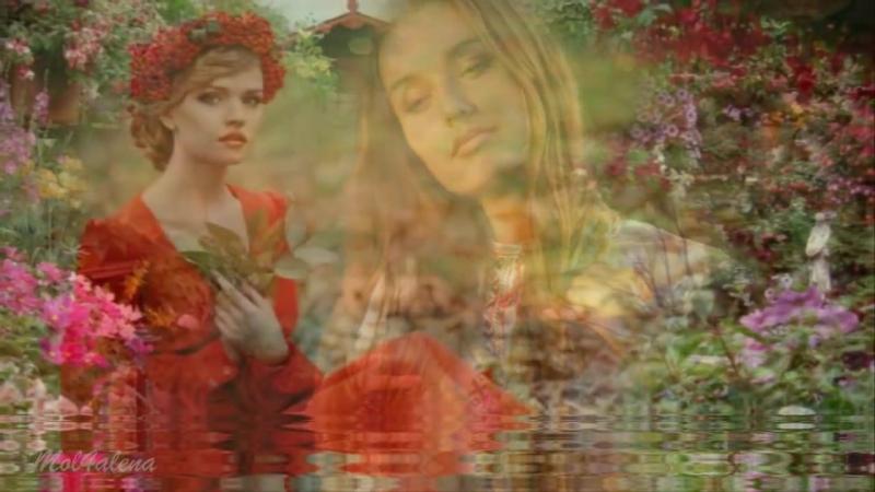 При долині кущ калини – украінська народна пісня (1)