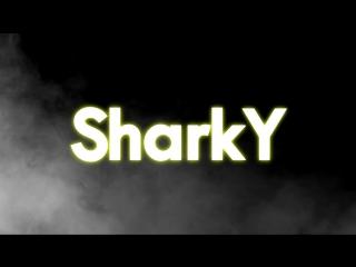 LOGO SHARKY