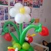 Прилуцькі повітряні кульки!