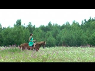 Алирика - Лошадка