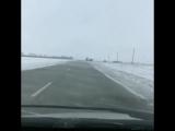 Дорога Бийск-Барнаул
