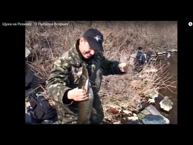 Удачная рыбалка на Резинку: плотва, карась и ЩУКА! О Рыбалке Всерьез видео 75.