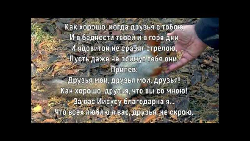 Друзья мои/Елена Ваймер