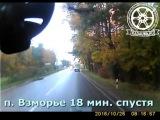 Разница в пешеходах. Калининград. 26.10.16