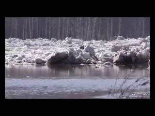 Наводнение под Новокузнецком в Сарбале. Аэросъемка