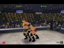 Рэнди Ортон (с Дэниелом Брайаном) против Triple H (с Шоном Майклзом)
