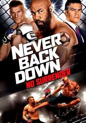 Никогда не сдавайся 3 (2016)