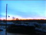 Аркадий Кобяков - А над лагерем ночь видео клип скачать бесплатно и без регистрации