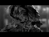 Диллинжер/Гребенщиков - Животные невиданной красы