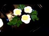 Цветы из яиц! Украшения тарелки! Как красиво оформить стол!
