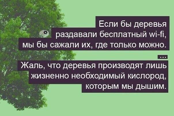 https://pp.userapi.com/c626617/v626617686/92fa/94I5xT_rJXY.jpg