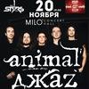 Animal Джаz   MILO CONCERT HALL   20 ноября