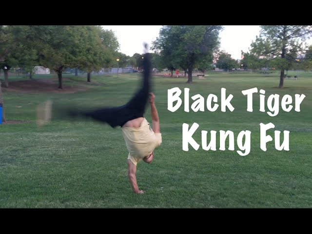 Black Tiger Kung Fu KATA Most Powerful Martial Art in the World