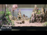 Comment faire un aquarium en aquascaping Dragon Scape