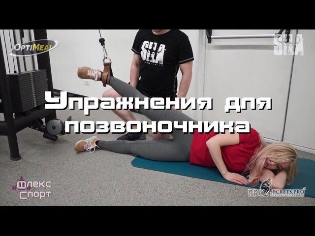 Простые упражнения для поясничного отдела ghjcnst eghf;ytybz lkz gjzcybxyjuj jnltkf