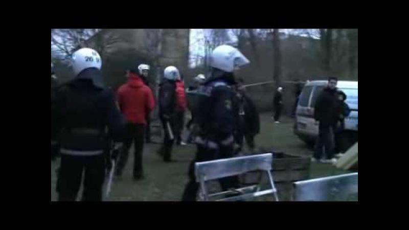 Svensk Ungdom - Frågor till far
